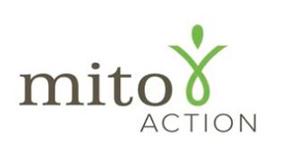 Mito-Action