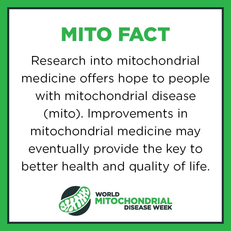 Mito Facts11