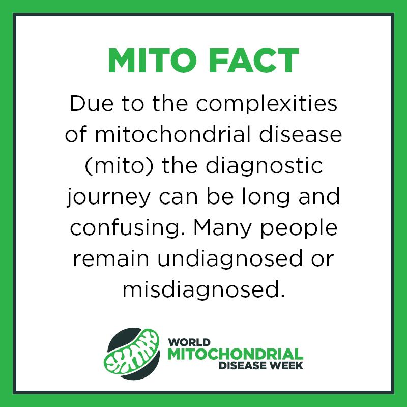 Mito Facts12
